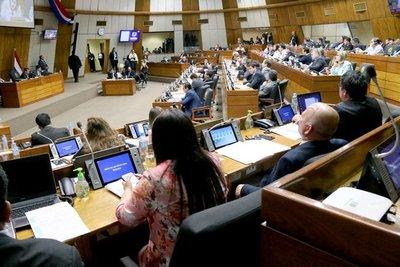 En audiencia pública debatirán creación del Instituto Paraguayo de la Carne