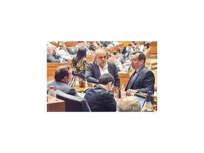 El blanqueo a 5  intendentes prosigue mañana en Diputados