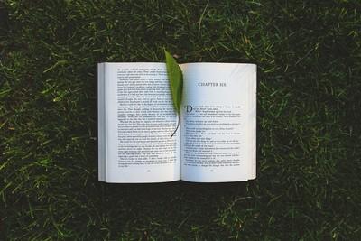 Diez títulos recomendados por el Día del Libro de 2019