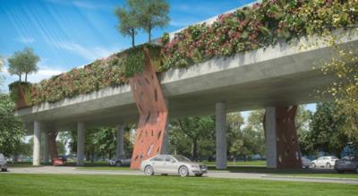 Judicializan caso para impedir necesario viaducto en Botánico