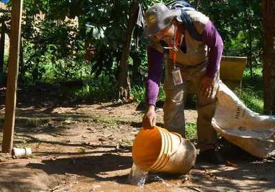 Cerca de 45.000 criaderos fueron eliminados en campaña antidengue en Alto Paraná