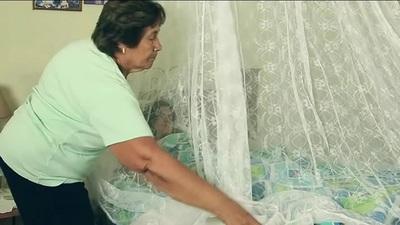 Pacientes con síntomas de dengue acuden de manera tardía a consultar