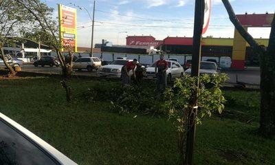 Delito ambiental sobre la Avenida San Blas