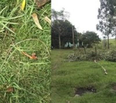 Niño de 8 años muere electrocutado tras la caída de un cable