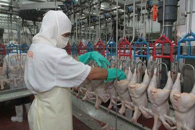 Crisis sanitaria en China beneficiaría exportación de pollos, según UGP