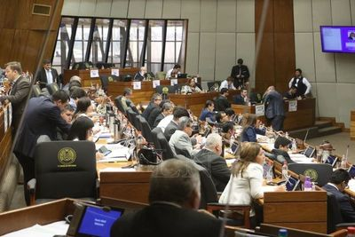 """Diputados aprueba proyecto """"Ñane Energía"""" y vuelve al Senado"""