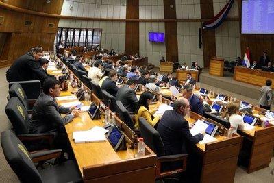 """""""Ñane Energía"""" sufrió modificaciones y vuelve a consideración de Senadores"""