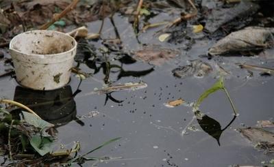 HOY / Suman seis las muertes por dengue y epidemia apunta a extenderse