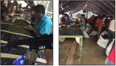 Operativo Rescate: Presumen que narcos esclavizaban a niños indígenas