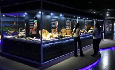 Museo de ITAIPU cumple 40 años y lo celebra con eventos culturales