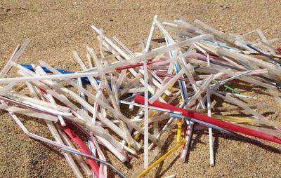 Buenos Aires prohíbe el uso de pajillas de plástico