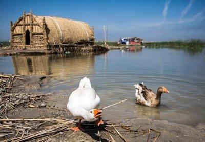 Irak apuesta por el ecoturismo