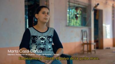 HOY / 'Cosa de mujeres': innovar en  yerba y comercializar hasta US$  11 el kilo, plan está en marcha