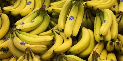 Reglamentan ley para inclusión de banana en la alimentación escolar