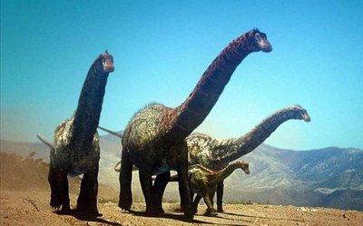 Identificanuna nueva especie de dinosaurios saurópodos