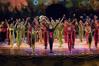 """Cirque du Soleil presentará """"Ovo"""" con siete funciones en Paraguay"""