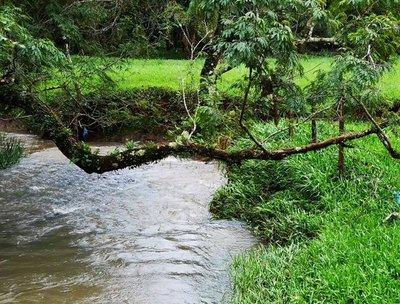 Coordinan acciones para la protección de principales arroyos de Encarnación