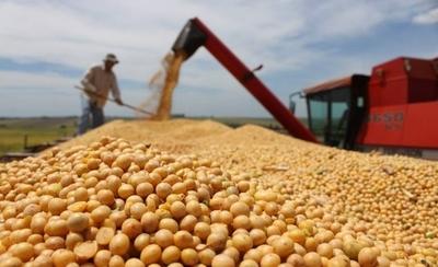 HOY / Crisis de la soja amenaza a Paraguay con perder el 1,5 % del PIB