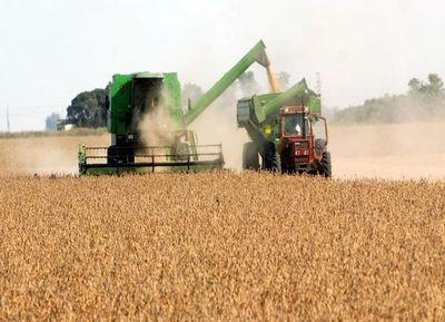 Crisis de la soja amenaza a Paraguay con perder el 1,5 % del PIB