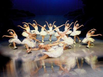 Suspenden funciones de El lago de los cisnes sobre hielo de este sábado