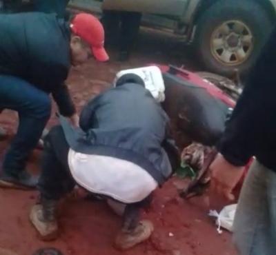 Niño de 4 años fallece en tiroteo