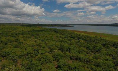 Compromiso ambiental de Itaipú asegura protección y conservación del patrimonio natural del país