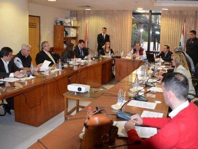 Hay incertidumbre en el Senado sobre la expulsión de Amarilla
