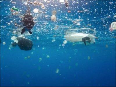 Descubren grandes cantidades de microplásticos en las profundidades marinas