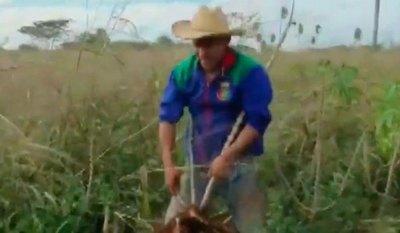 Campeón de la Recopa con River y cosecha mandioca