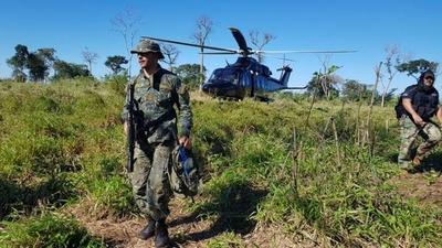 HOY / Golpe a narcos: anulan más de 1.200 toneladas de marihuana en Amambay