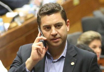 Diputados designó Mesa Directiva colorada con Alliana en la Presidencia