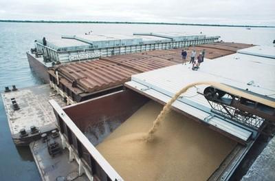 La exportación de soja registra una fuerte caída en 2019 frente a 2018