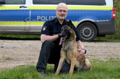 Jack, un perro que hace carrera en la Policía