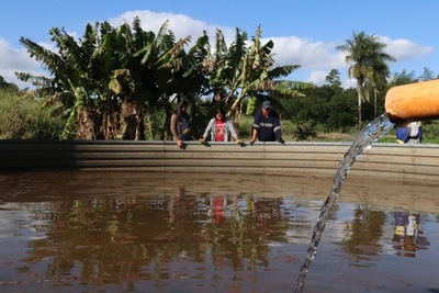Grandes empresas comercializan la planta de stevia de Paraguay