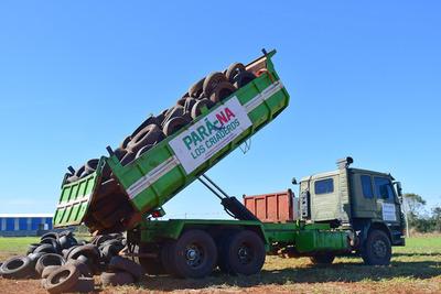 Eliminan más de medio millón de criaderos en Alto Paraná