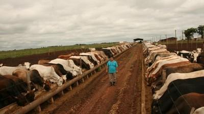 EEUU se queda con más del 70% de la cuota 481 para Europa y complica a producción de ganado a corral en Uruguay y Argentina