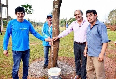 Habilitan sistema de agua potable en Guairá