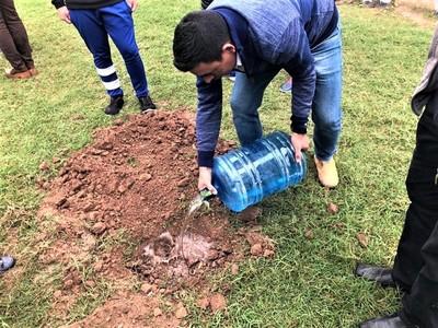 Realizan plantación en escuelas y parques de Filadelfia por el Día del Árbol