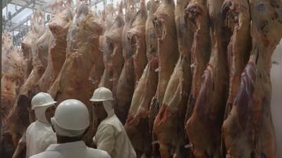 Los exportadores continúan a la espera de mejores condiciones para la venta de carne en Chile y Rusia