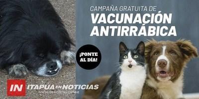 GRAN VACUNACIÓN DE ANIMALES DOMÉSTICOS GRATUITA EN LA UNI.