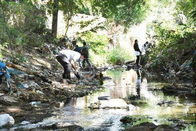 Unos 600 voluntarios limpiaron el arroyo Damián en Limpio