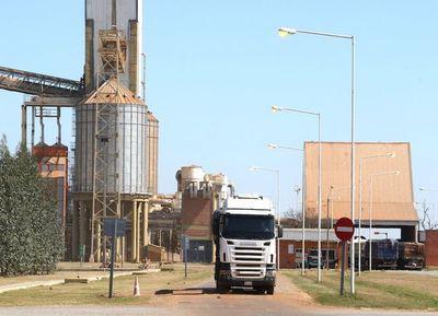 Molienda de oleaginosas registró una retracción del 7,5% a mayo