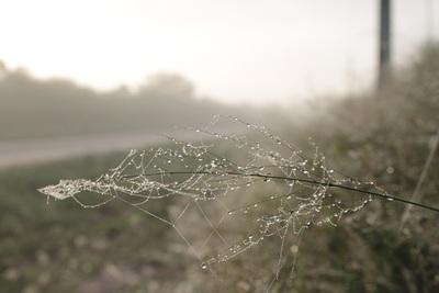 Ambiente frío a fresco continuaría hasta inicio del fin de semana