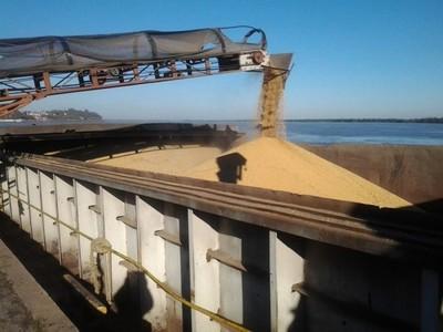 Las ventas del complejo sojero cayeron en más de 500 millones de dólares