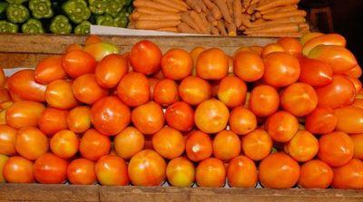 Tomateros analizarán qué acciones tomar ante el masivo contrabando