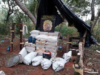 SENAD desarticula campamento en Amambay y encuentran más de 2 toneladas de marihuana