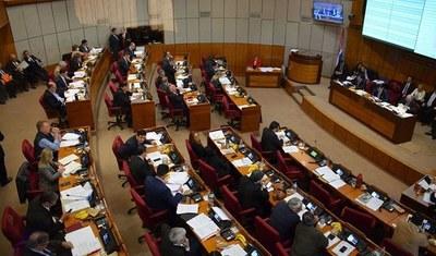 Tratan hoy proyecto de ley que busca reducir tarifa de la ANDE