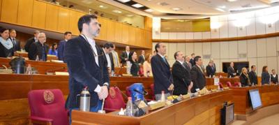 Convocan a Sesión Extra en Senado para tratar proyecto Ñane Energía