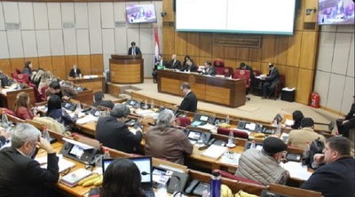 Senado aprueba proyecto de ley 'Ñane Energía'