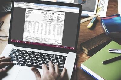 Comercios acceden a sus facturas en formato digital